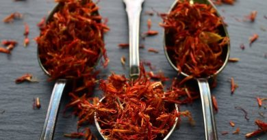 Berburu Saffron si Red Gold Rempah Herbal Berjuta Manfaat